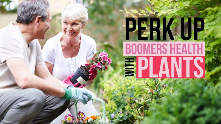 perk up boomers health with plants