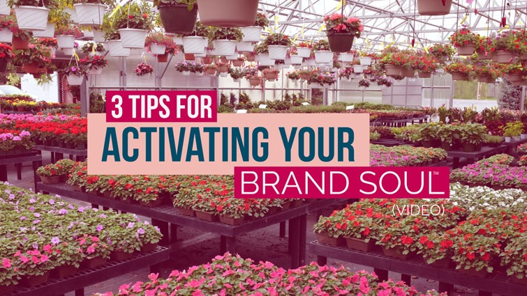activating your brand soul
