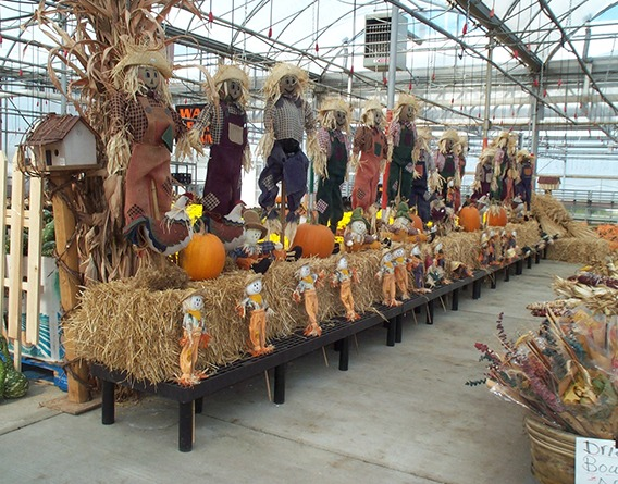 Outdoor Halloween decor display at a nursery