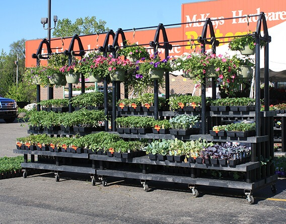 Display of plants outside a McKays Hardware store