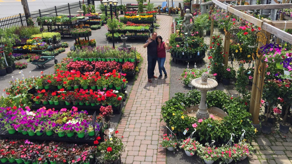 Entire outdoor live goods display at Venezia Garden Center.